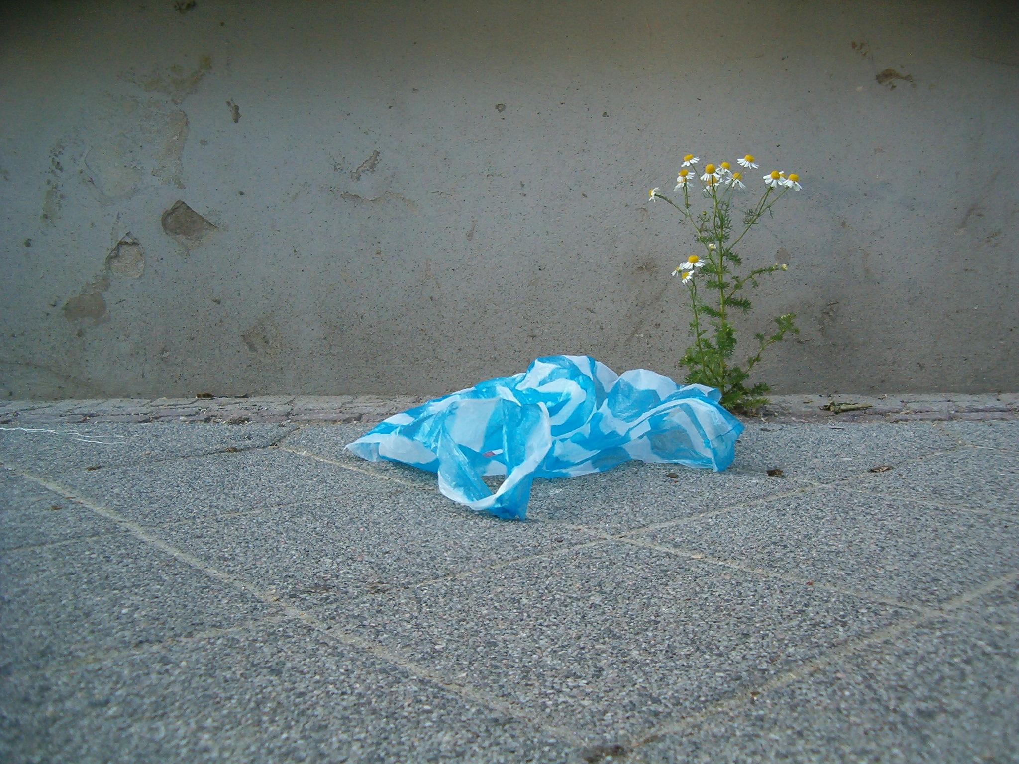 Der Umwelt zuliebe sollen Plastiktüten in Deutschland bald nicht mehr gratis vergeben werden dürfen.