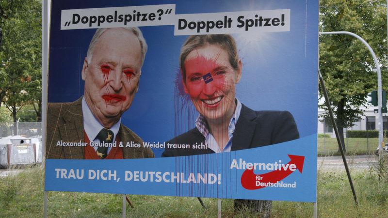 AfD, Alice Weidel, Alexander Gauland, NPD